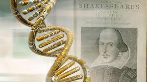 Foto libri archiviati sul DNA