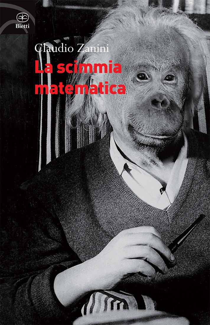 Zanini_scimmia_1