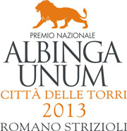 logo-albingaunum-2013