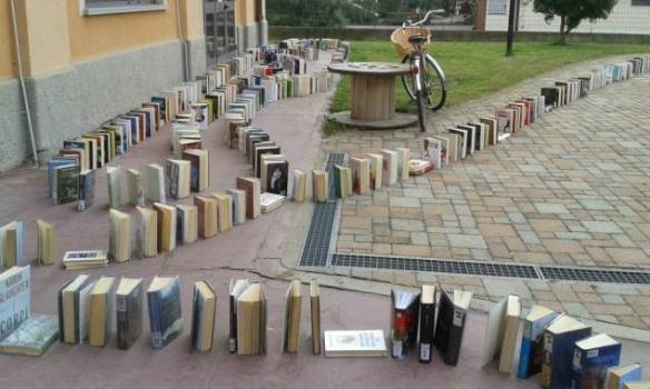 domino libri
