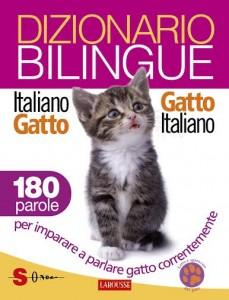 dizionario gatto uomo