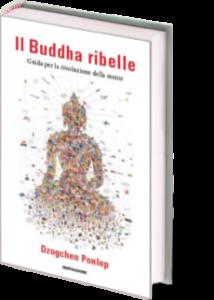 3Dnn+9_2C_pic_9788804648000-il-buddha-ribelle_original