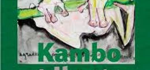 kambo-iboga
