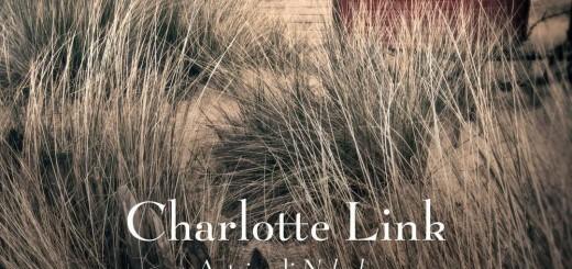 La scelta decisiva - Charlotte Link