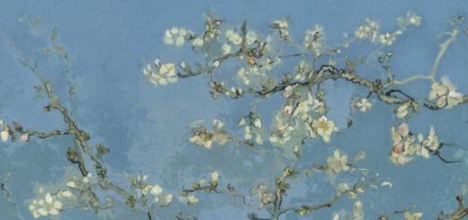 Vincent Van Gogh. Tra ricordi e colori - Miriam Fileti Mazza