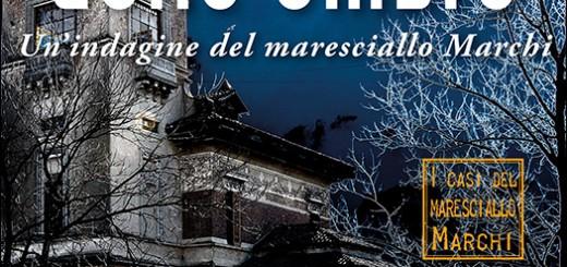 LA-CASA-DELLE-OMBRE-Il-nuovo-romanzo-noir-di-Paola-Mizar-Paini